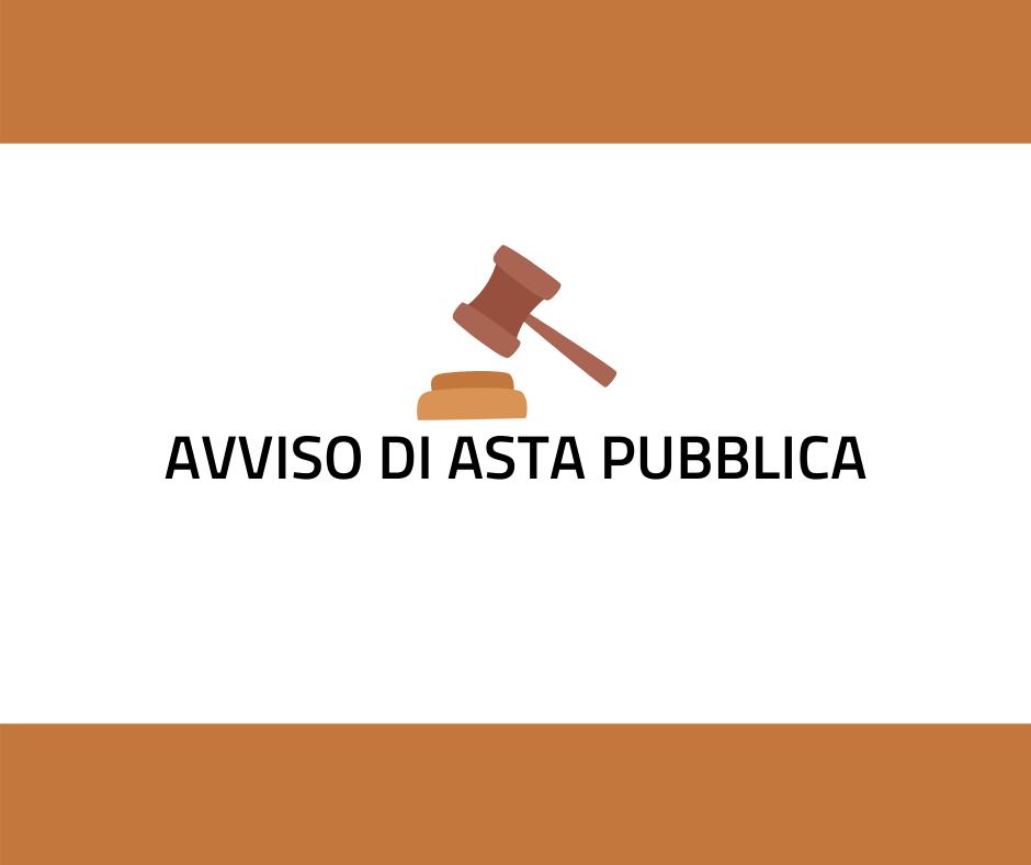Vendita automezzi comunali scuolabus Iveco e Fiat Panda 4x4 Indizione asta pubblica